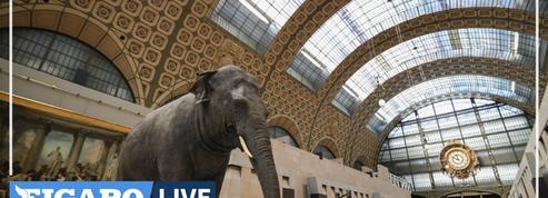 Le musée d'Orsay entend pousser les murs pour exposer davantage de nouvelles œuvres