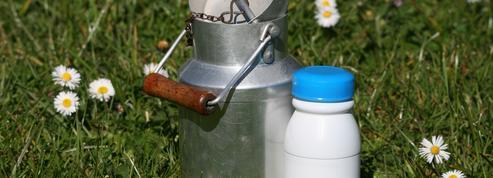 Litige sur le lait canadien: Washington met en place un groupe spécial de règlement