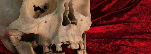 Égaré depuis 300 ans, le crâne en marbre signé du Bernin identifié à Dresde