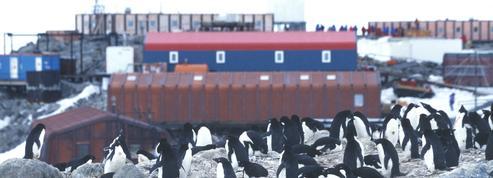 Antarctique: manque criant de financements pour la recherche polaire française
