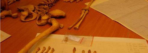 Le squelette, retrouvé en Pologne un oiseau dans la bouche, est celui d'une enfant Scandinave du XVIIe siècle