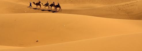 Maroc : d'oasis en kasbahs, les pépites de la vallée du Drâa