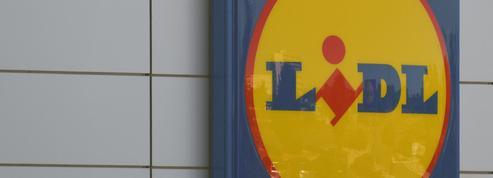 Les baskets Lidl font leur retour en magasin... et sur le Web