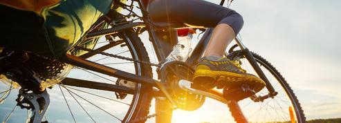 Cyclotourisme : le guide pour choisir la bonne monture selon votre escapade