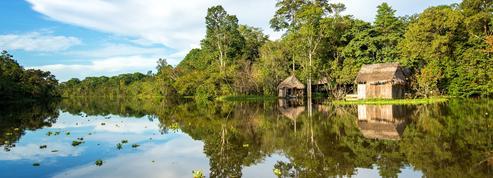 Les satellites comme moyen de lutte contre la déforestation pour les populations indigènes