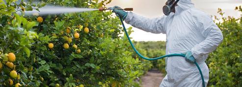Réduction des pesticides: l'exécutif se voit dans «la bonne direction» malgré des ventes en hausse en 2020