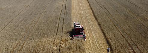 Chicago: le blé et le maïs en repli, craintes pour la demande