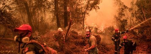 Grèce : «corps-à-corps» pour arrêter la course folle de l'incendie d'Eubée, plus de 3000 évacuations