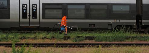 Trafic des TER interrompu entre Reims et Châlons après le déraillement d'un train de marchandises