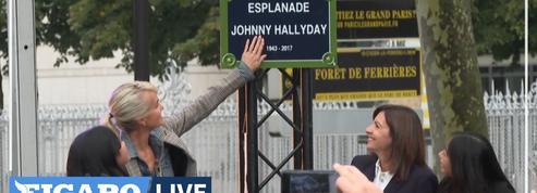 L'hommage et l'œuvre dédiés à Johnny Hallyday déçoivent les fans