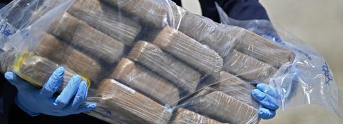 Pays-Bas : énorme saisie de cocaïne dans le port de Rotterdam