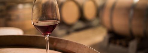 Forces cosmiques, rituels ésotériques et êtres surnaturels : ce qui se cache derrière les vins «biodynamiques»