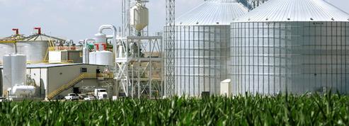 Chicago: rebond des cours des produits agricoles