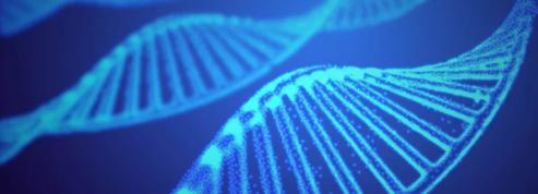 Faut-il avoir peur des ciseaux génétiques ?