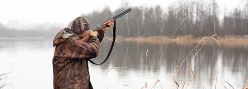 Ariège : la justice administrative suspend la chasse à la perdrix des neiges