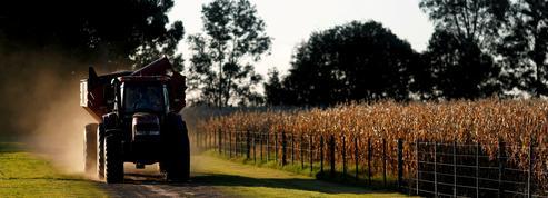 Chicago : le blé de printemps au plus haut depuis neuf ans