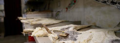 En conserve, en beignets et même au musée : pourquoi les Portugais sont-ils si attachés à leur morue ?