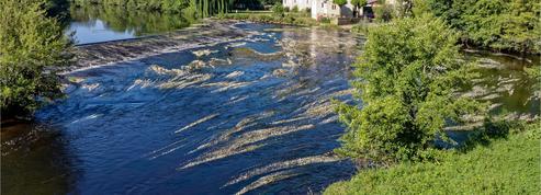 Des rivières françaises polluées aux détergents, insecticides, révèlent deux études