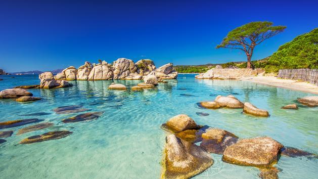 La Corse du nord au sud, nos cinq plages préférées sur l'Île de Beauté