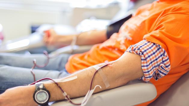 Don du sang : la suppression de la période d'abstinence imposée aux homosexuels inquiète AIDES et l'AFH