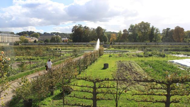 Jardins Ouverts, 48h BD... les  sorties du week-end