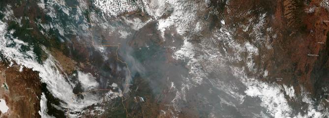 Incendies en Amazonie : Macron tire la sonnette d'alarme