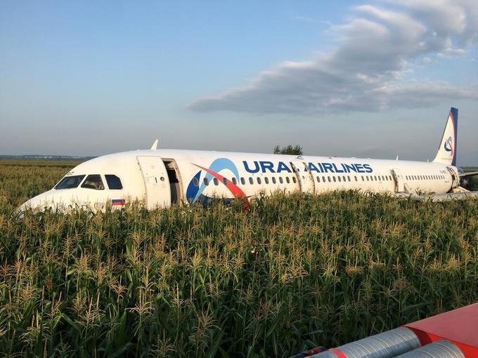 Un avion a atterrit en urgence dans un champ de maïs.