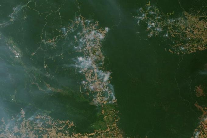 La ville de Novo Progresso est située le long de la route BR-163, qui relie les agriculteurs du sud de l'Amazonie à un port de haute mer situé sur le fleuve Amazone, à Santarem.