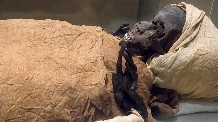 En Égypte, la momie d'un pharaon livre ses secrets grâce à la science - Le Figaro
