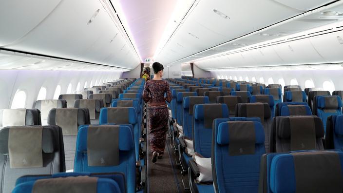 Covid-19 : Singapore Airlines inaugure un passeport numérique - Le Figaro