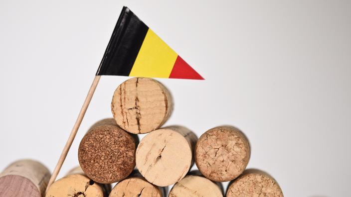 Belgique : la Commission «surprise» par la prolongation de l'interdiction des voyages