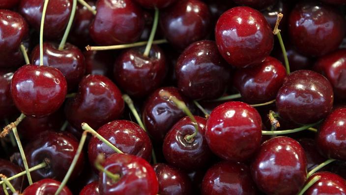 Mai : quels sont les légumes et les fruits de saison ?