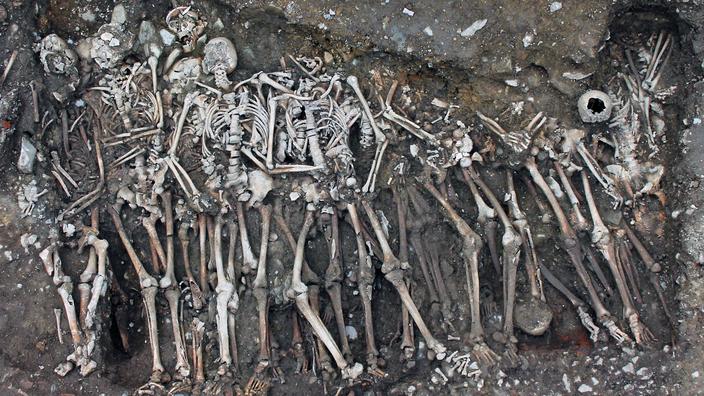 À Rennes, les corps de deux fosses communes racontent les derniers épisodes de la guerre de Bretagne