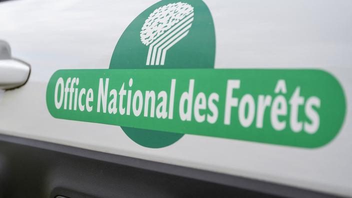 L'Office national des forêts (ONF) va supprimer près de 500 postes en cinq ans