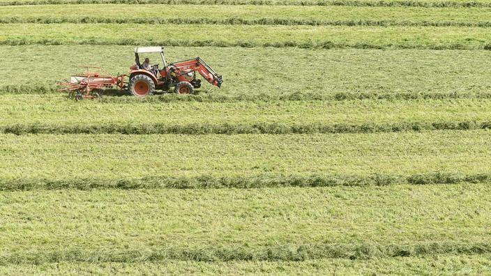 Agriculture: l'innovation doit être au cœur des soutiens publics, selon l'OCDE