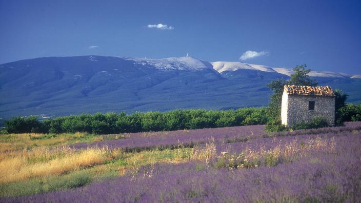 Tour de France : le Mont Ventoux, des versants pour tous les goûts