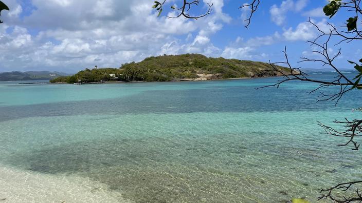 Aux Antilles, l'État poursuivi par les descendants d'esclaves