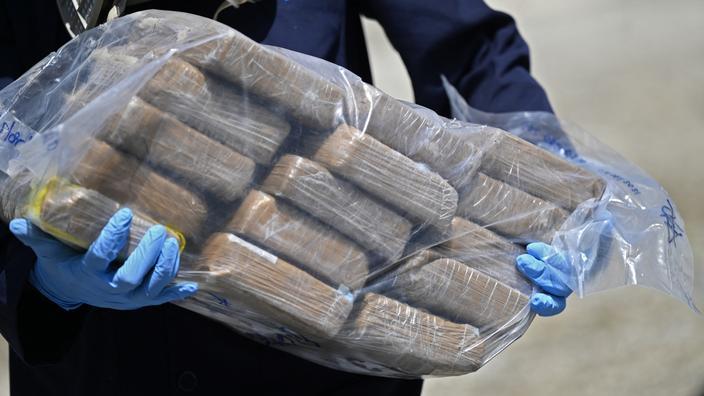Un trafic international de cocaïne démantelé en Belgique, 27 arrestations