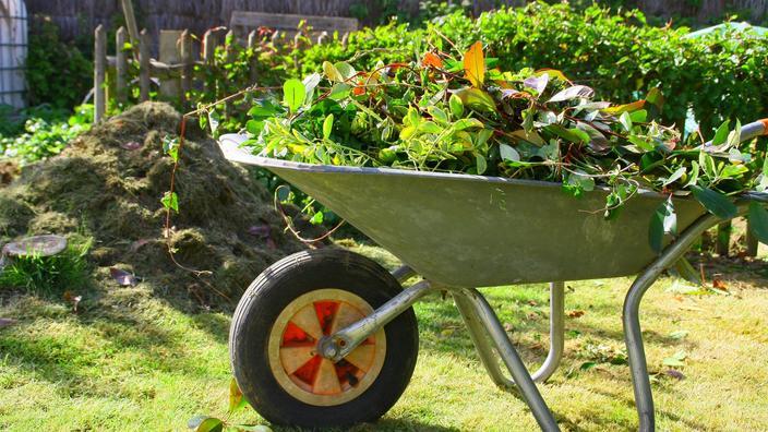 Brûler les déchets verts dans votre jardin : que dit la loi ?