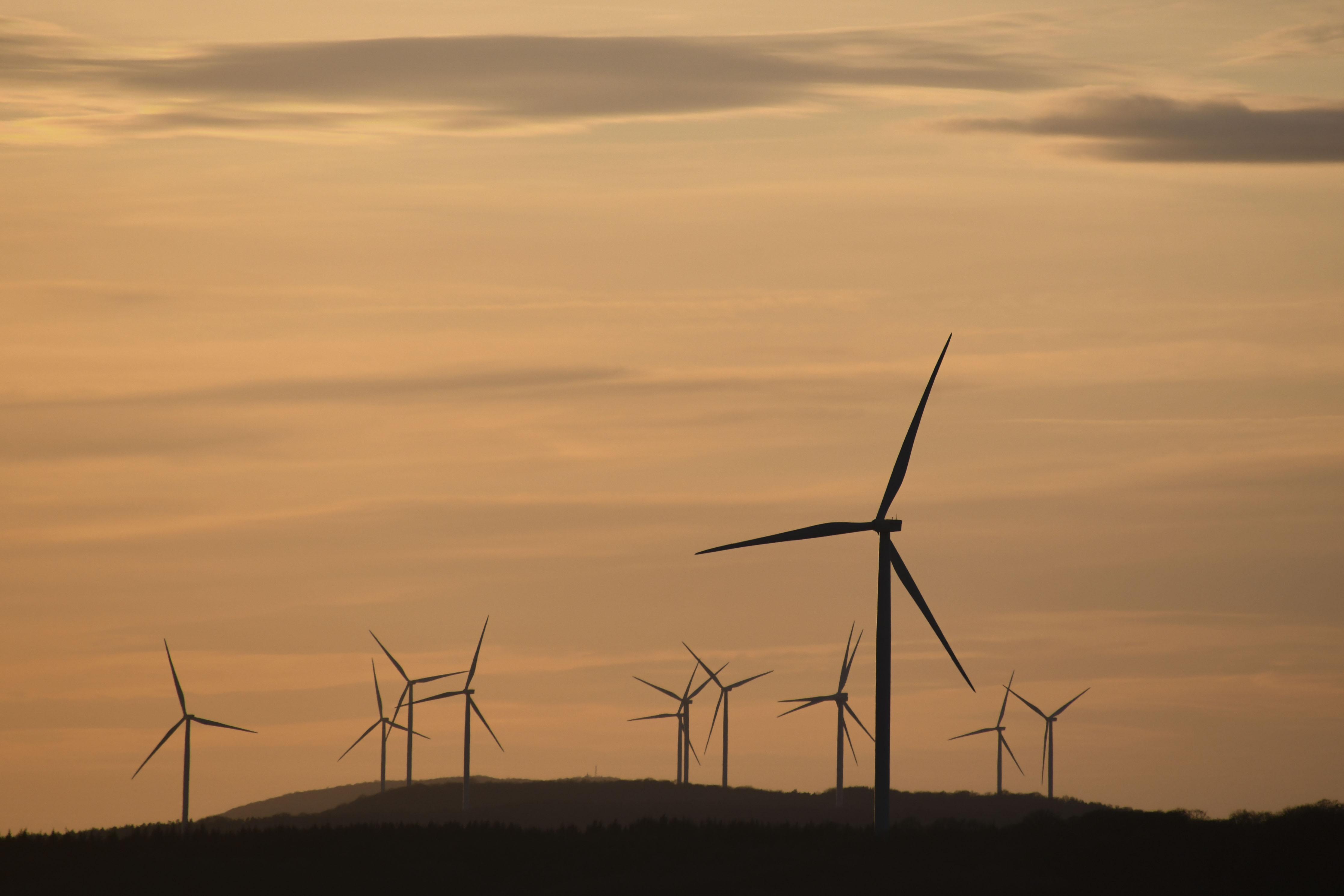 Éoliennes : le gouvernement allemand envisage de payer les habitants vivant à proximité