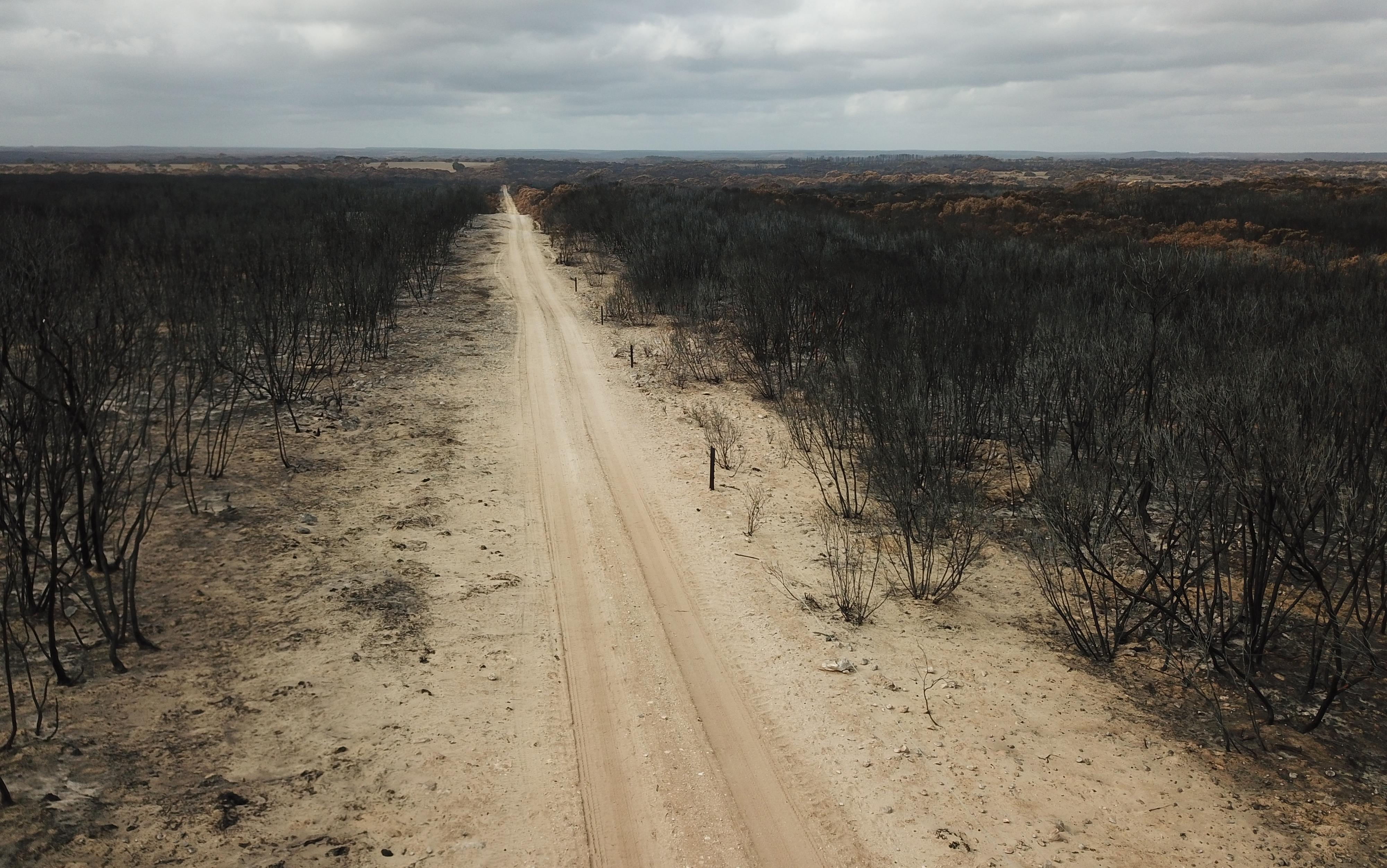 Sécheresse en Australie : chute historique de la production agricole
