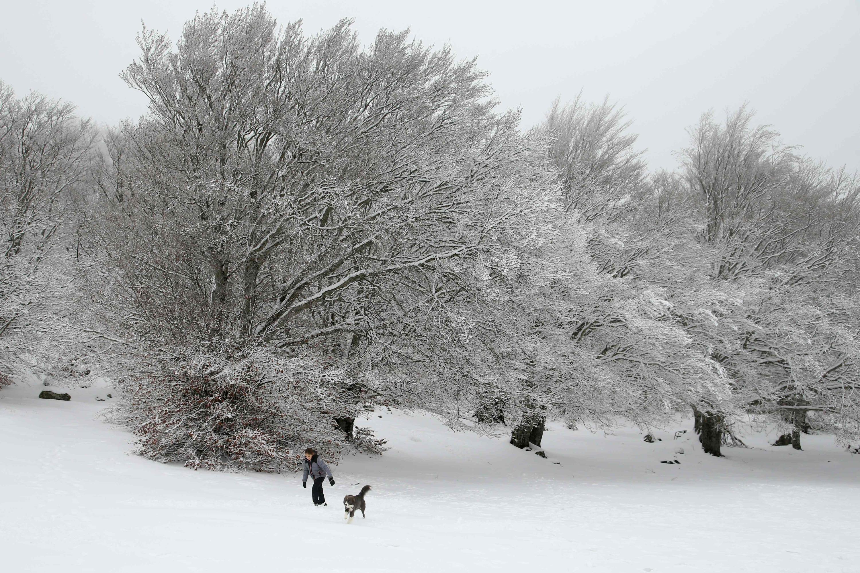 Météo : la Lozère en vigilance orange neige-verglas pour la nuit
