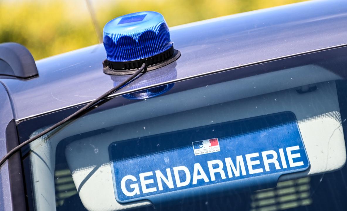 Haut-Rhin : un homme soupçonné d'avoir séquestré pendant des mois son fils de 39 ans