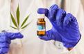 Cannabis médical: un comité d'experts juge son autorisation «pertinente»