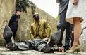 Audiences : Les petits meurtres d'Agatha Christie leader devant Arthur sur TF1