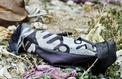 Allemagne: la militante de Daech avait laissé mourir de soif une fillette