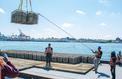 À New-York, les huîtres utilisées pour nettoyer le port