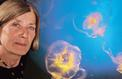 Jacqueline Goy: «Les méduses prolifèrent à cause de la surpêche»