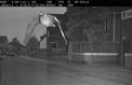 Allemagne: Un pigeon flashé par un radar à 45 km/h