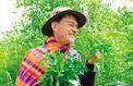 François Couplan: «Les plantes sauvages, c'est du sérieux»